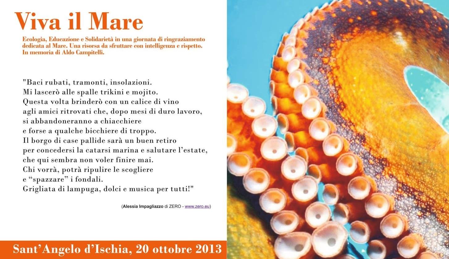 Locandina Viva il Mare 2013bis